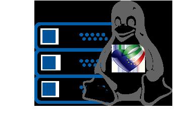 هاست لینوکس